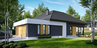 Proiect casa contemporana doar cu parter