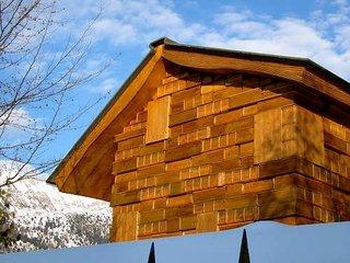 Vedere din spate a casei construite din lemn
