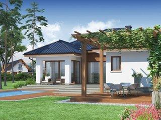 Terasa cu pergola cu plante agatatoare in fata casei