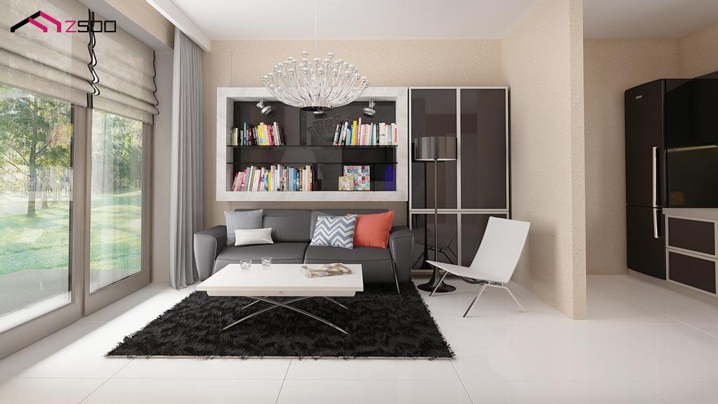Living open space casa de vacanta