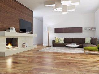 Living cu perete de accent placat cu lemn