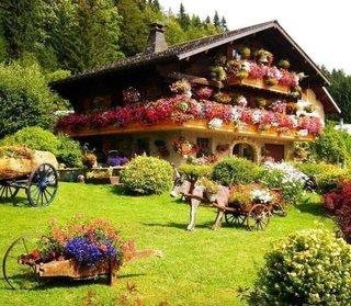 Balcoane case cu flori curgatoare
