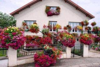 Casa cu ferestre si gard impodobit cu flori