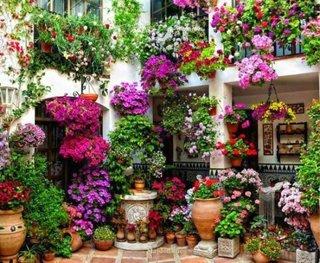 Decor cu flori colorate