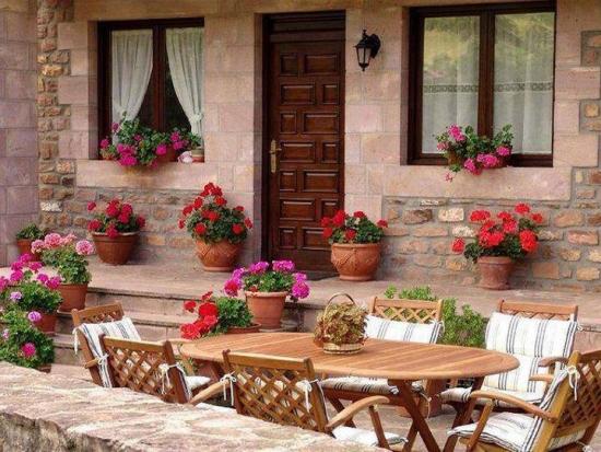 Ghivece cu muscate colorate decor terasa