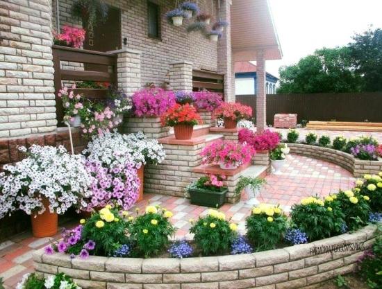Terasa decorata cu flori colorate