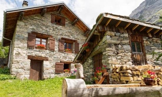 Proiecte de case din piatra si lemn