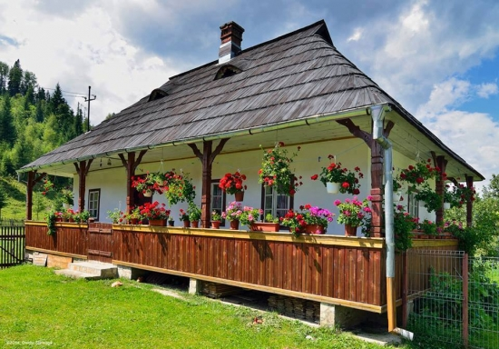 Casa traditionala cu pridvor de lemn