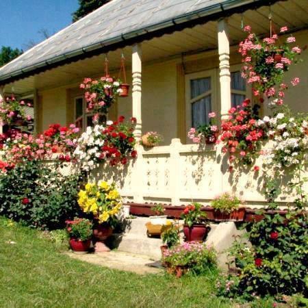 Veranda din lemn cu flori