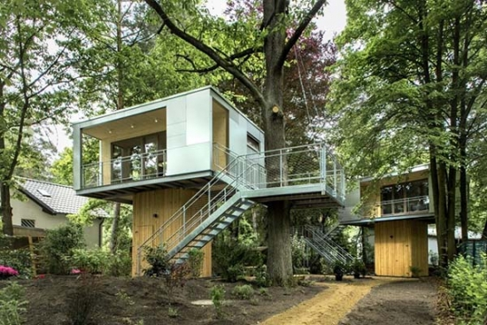 Casa din copac urbana
