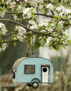 Masinuta veche atarnata in copac pentru pasari
