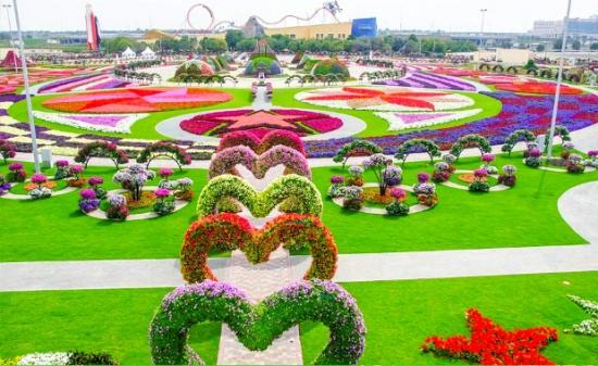 Gradina Miracle Garden Dubai