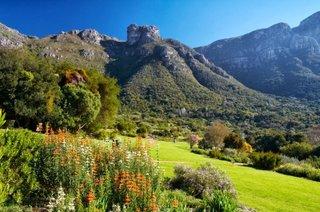 Gradina Nationala Botanica Kirstenbosch
