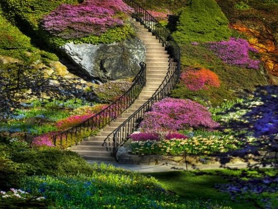 Acestea sunt cele mai frumoase gradini din lume