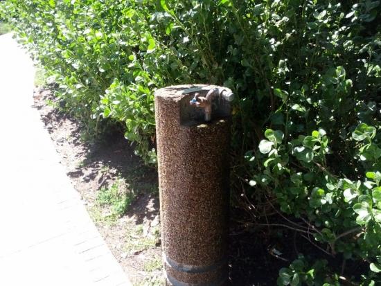 Cismea de gradina din beton placat cu tencuiala structurata