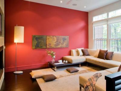 Living cu perete de accent rosu