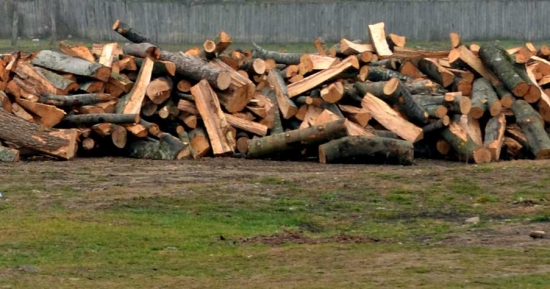 Cele mai eficiente metode de a reduce consumul de lemne iarna