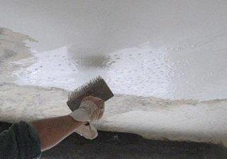 Umezire tavan cu bidineaua cu apa