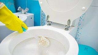Solutii facute in casa pentru igienizare vas toaleta