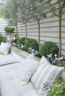 Canapea alba langa vegetatie