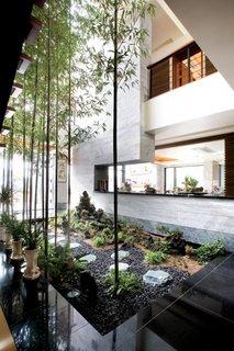 Curte interioara cu vegetatie
