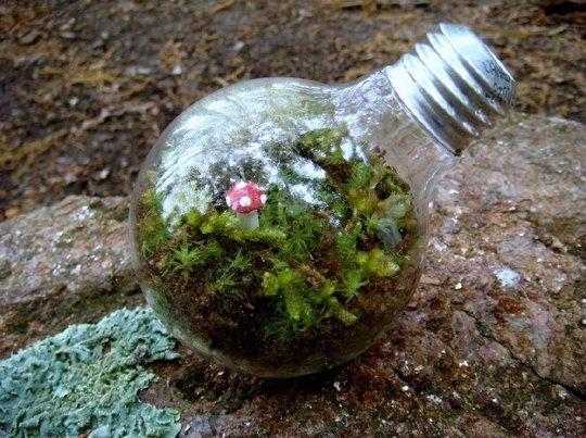 Sera in casa ta datorita becului reciclat