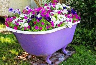Cada veche reciclata cu flori in gradina