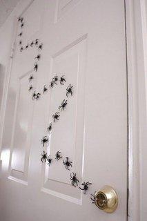 Paianjeni falsi lipiti de usa
