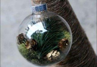 Glob transparent cu crenguta de brad si conuri