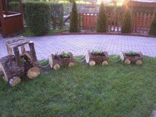Trenulet pentru gradina confectionat din busteni de copac