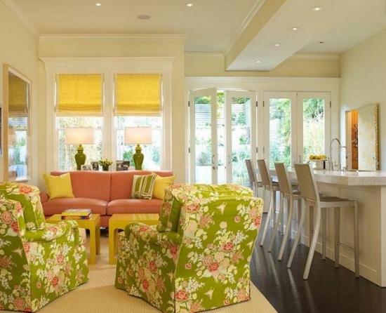 Living cu mobilier colorat