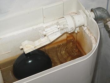 Flotor wc defect