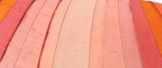 Schema cu nuante de corai sau culoarea piersicii
