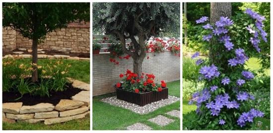 Flori pentru gradini umbroase