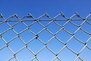 Gard de plasa impletita | Sisteme de imprejmuire pentru terenuri