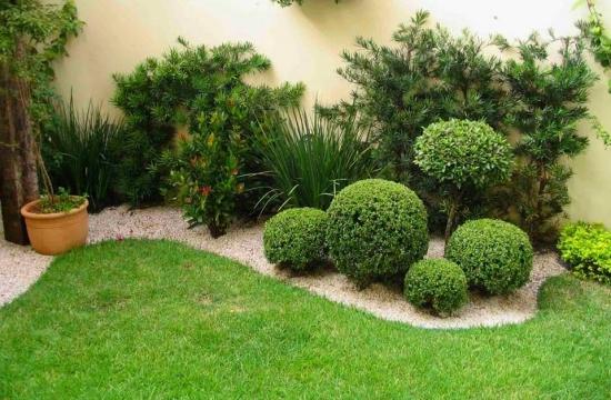 Aranjament gradina cu arbusti mereu verzi