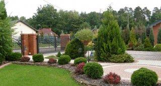Gard viu cu frunze verzi si cu frunze rosii