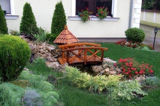 Tuia inaltime medie plantata langa casa