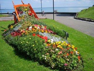 Roaba cu flori varsate