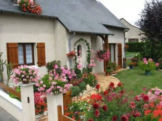 Intrare in casa decorata cu mix de flori colorate