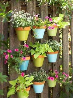 Ghivece de flori colorate suspendate pe gard