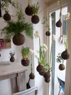 Idei de amenajare a florilor suspendate in interior