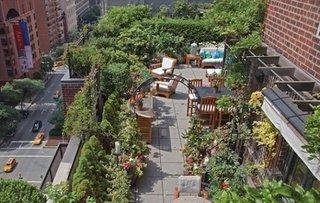 Arbusti si flori pe terasa unui bloc pavata cu gresie
