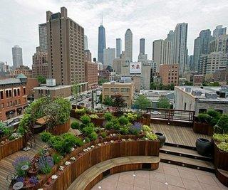 gradina pe acoperis cu plante verzi proiectate pe mai multe niveluri