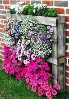 Gradina verticala cu flori curgatoare