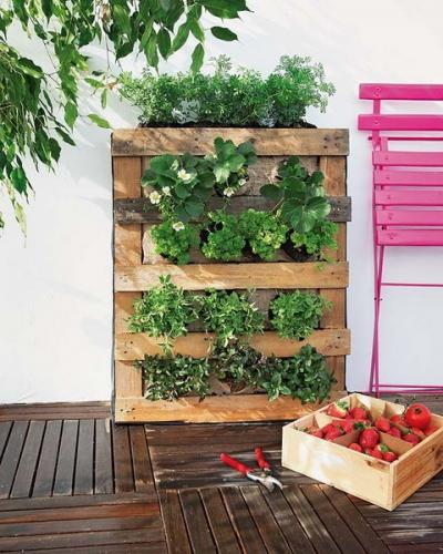 Gradina verticala din palet pentru plantare capsuni
