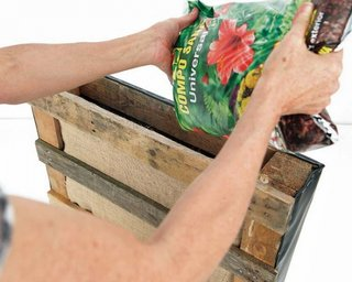 Umpleti paletul cu pamant de gradina