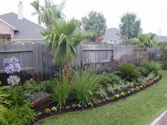 Rond cu plante exotice