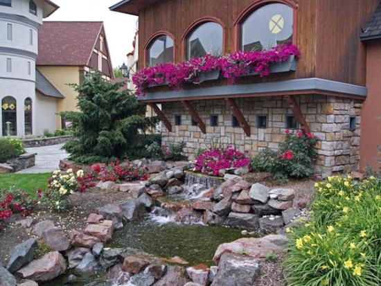 gradina cu flori si pietre