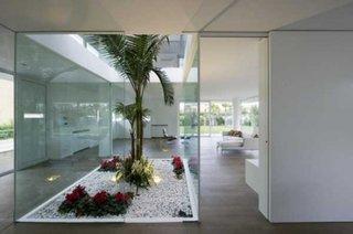Decor interior cu plante si pietris